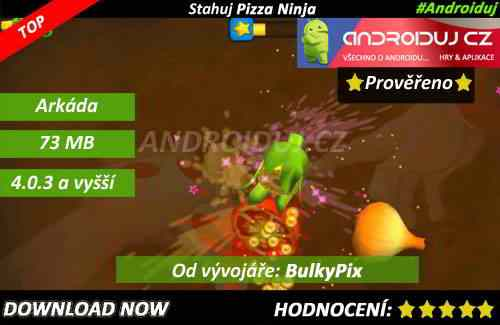 3- Pizza Ninja Story - Download