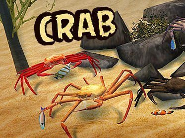 Crab simulator 3D