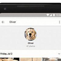 Rozpoznávání fotek na Google Photos už funguje i na zvířata