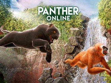 Hra Panther Online   zabavne hry novinky hry