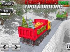 Hra převoz vánočního stromku