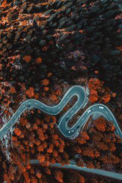 Tapeta na mobil - cesta v krásné přírodě