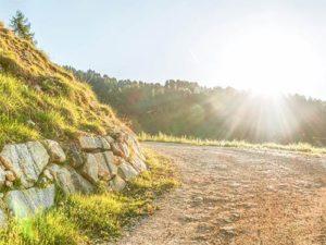 Tapety na mobil - překrásná příroda v denním světle