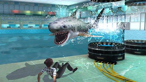 Whale shark attack simulator 2019